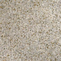 Gold Rush 12 in. x 12 in. Polished Granite Floor and Wall Tile (5 sq. ft. / case)