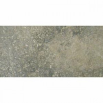 Terra Bengal Slate 12 in. x 6 in. Porcelain Floor and Wall Tile (9.69 sq. ft. / case)