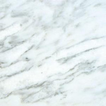 Greecian White 18 in. x 18 in. Polished Marble Floor and Wall Tile (11.25 sq. ft. / case)